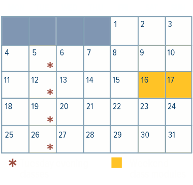 Medical Management Schedule Calendar