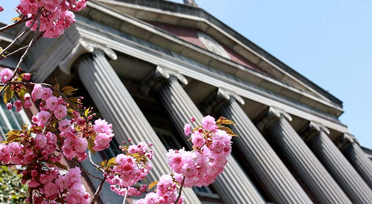 Rush Rhees Library with flowers